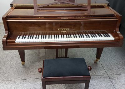 Piano-Playel_1